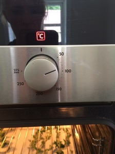 Oven up to temperature.