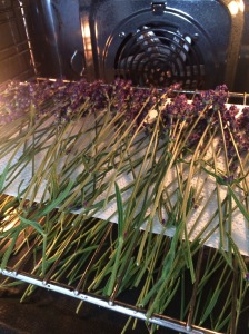 Top rack drying with a bit of paper towel to hold the stalks up.